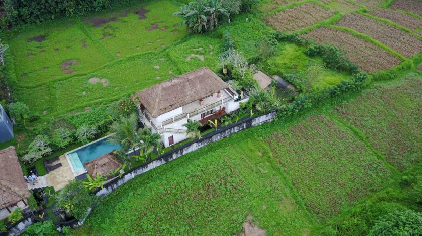 Ubud Three Bedroom Villa For Sale - Bali Luxury Estate (12)